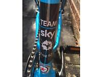 "Child's 24"" Wheel Bike - FROG 62 Team Sky"