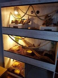 For sale - homemade custom vivarium £150