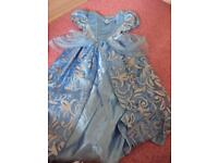 Cinderella dressing up costume