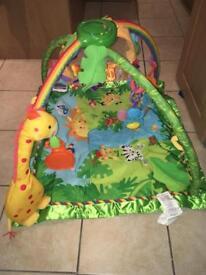 Fisherprice rainforest play gym