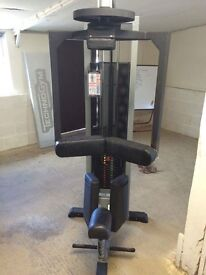 Rotory Torso commercial/home gym