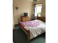 Double Room to rent in Vegetarian Household