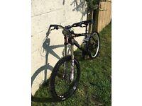 Cove downhill free ride bike