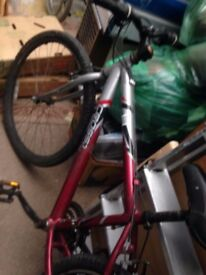 boys / adult bike , 6 gears, not used for ages, so come and get it