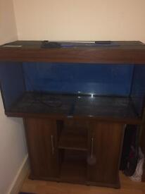Fish tank & cupboard