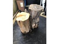 Chopped tree trunks / logs