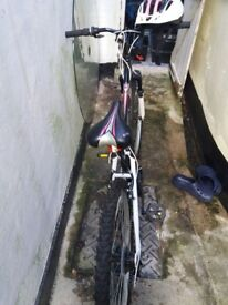 Apollo Spiral 17 inch mountain bike barely