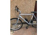 Men's Mountain Bikes x 2