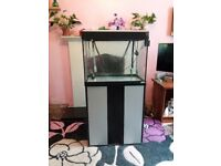 Fluval 90L Fish Tank with stand, complete setup with filter pump, heater etc