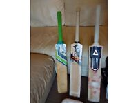 Urgent : 3 Cricket bats, Pads, 2 golves, Kit Bag