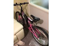 Ladies pedal bike