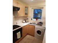 Flatshare/Double room offered in 2 bed east end flat