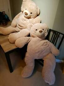 Large Cuddly Teddy Bears