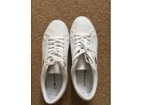 Lacoste Canvas Trainers size 6 BRAND NEW