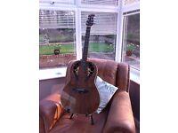 Electro / Acoustic Guitar.