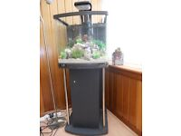 Fish Tank/ Aquarium and stand with extras