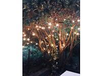 Outdoor light string (50bulbs)