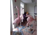 Flamingo models, life-size decorations, free to a good home, Gloucestershire