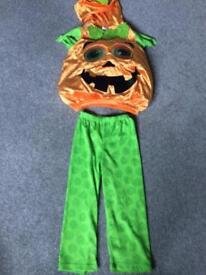 Pumpkin Halloween costume 3-4