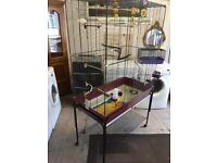 Large Bird cage on stand compleat setup and casters
