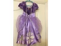 Princess Sophia dress