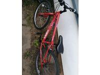 Bike size 24inch