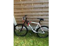 Apollo Evade men's mountain bike