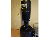 Everlast PowerCore Freestanding Heavy Bag