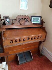 Large old organ