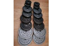 27kg metal weight plates