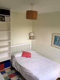 Good sized single/small double to rent in large family house