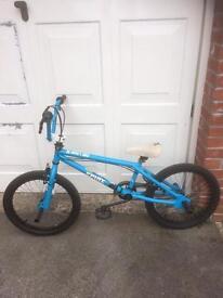 "X-Rated spine bmx bike 20"""