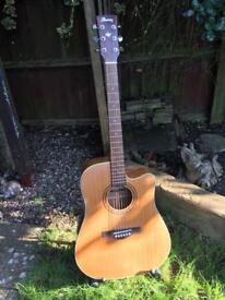 Ibanez Artwood AW250ECE-LG Electro Acoustic Guitar