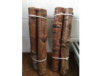 Birch Logs, cut from woodland in Wales