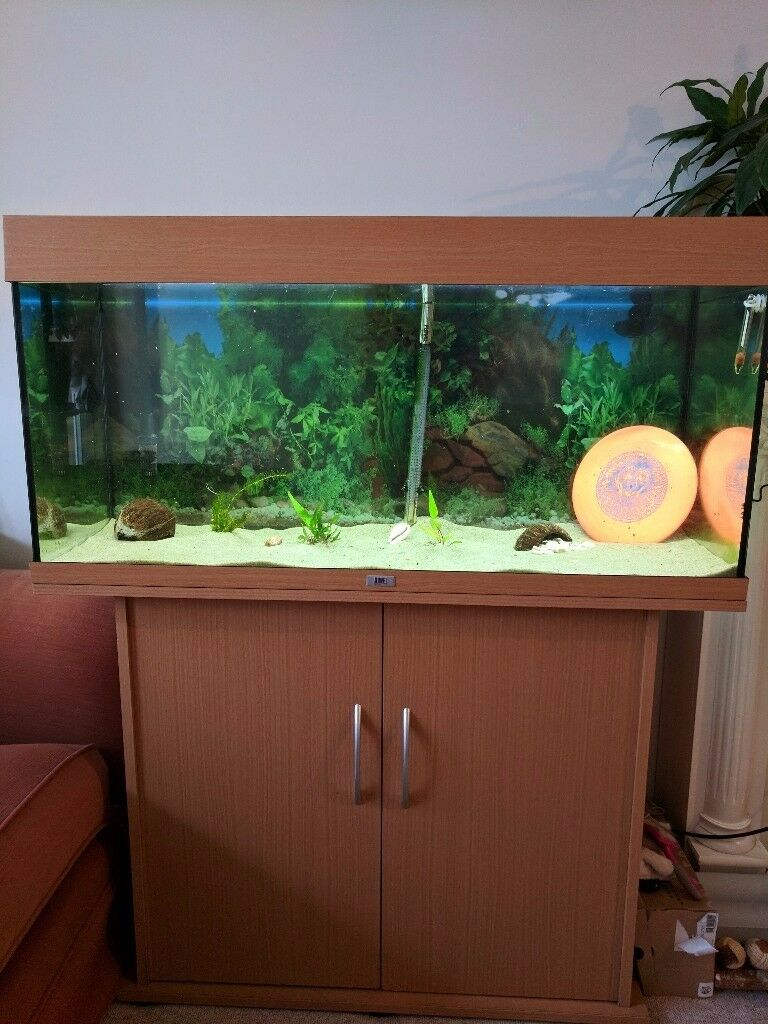 Jewel Rio 180l Aquarium fish tank, ALL Accessories included. Everything you need to get started