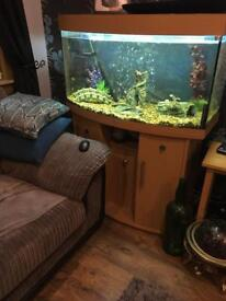 Juwel vision 180 fish tank and stand with accessories. Full set up.
