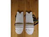 Cricket pads for FREE - used but in good condition . Suitable for kids upto 14 years if not tall