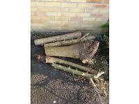 Logs - FREE