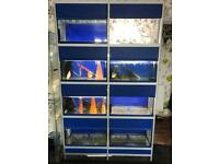 John Allen fish tank and display unit