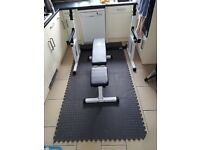 Dumbbell Bench, Adjustable Squat Stand and Barbell Hooks, Dips & 8 interlocking Mats (press, weights