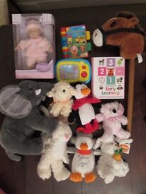 Baby toys (cuddly animals, baby doll, 2 books, wind up TV, hobbyhorse)