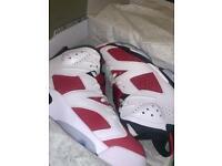 "Air Jordan 6 ""Carmine 2021"""