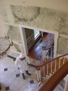 Asbestos/ Mould  Abatement & water damage cleanup