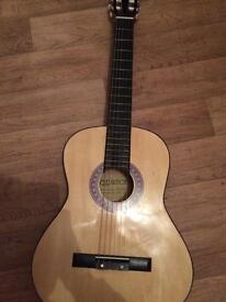 Elevation acoustic guitar