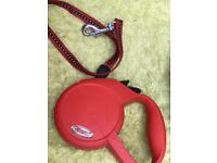 Red Extendable dog lead
