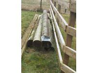 Five 3 metre poles x 150