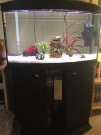 150 litre aquarium with stand