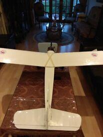 RC Plane remote control petrol Kit & Radio Control