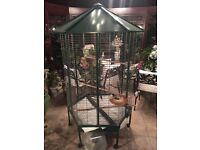 Large Metal Bird Cage in great condition!