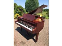 Zimmerman walnut baby grand 4.6ft | Belfast pianos |Free delivery |